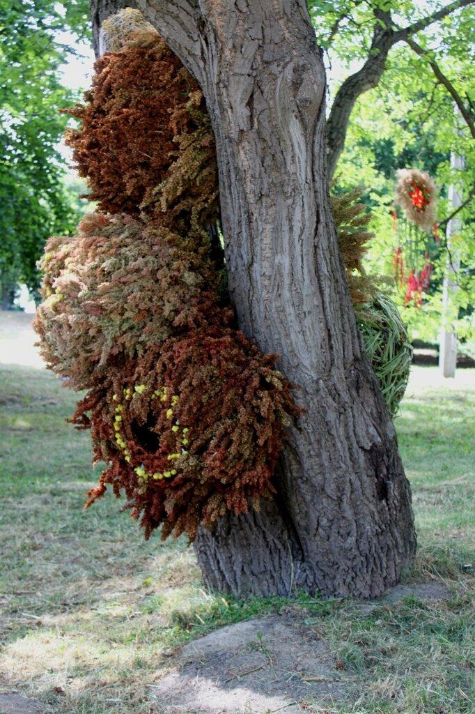 Инсталляция на деревьях