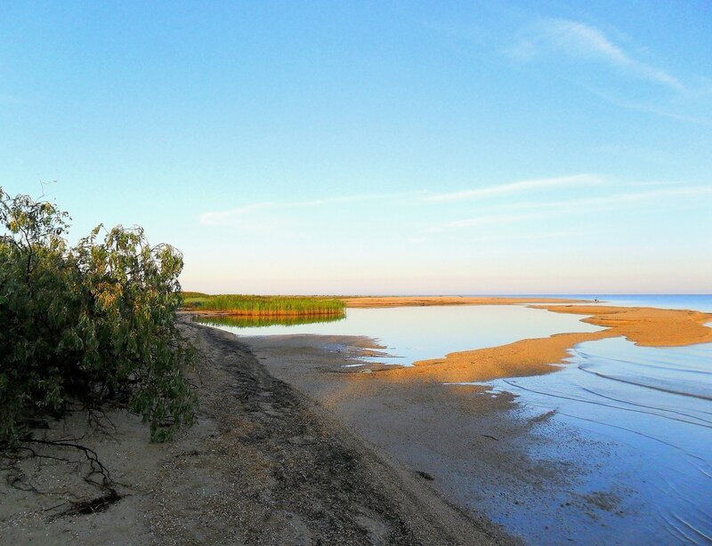 Утром, на Азовском берегу ... SAM_2278.JPG