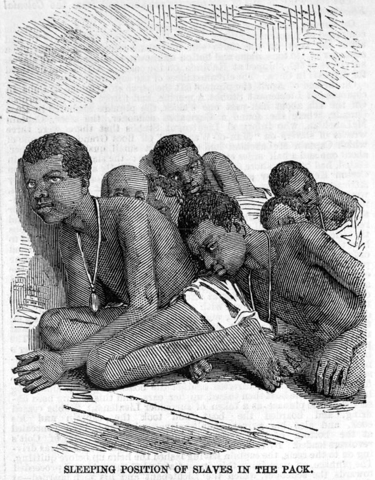 Положение во время сна для рабов в процессе их транспортировки в трюме судна (1857 год)