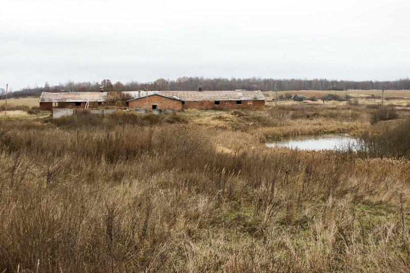 заброшенный скотный двор у деревни Сергие
