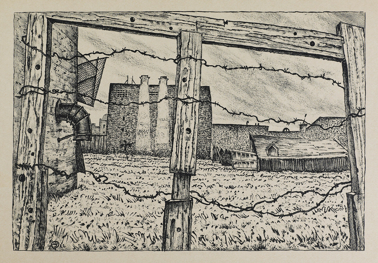 Огород на Обводном канале