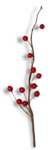 natali_design_xmas_berries-sh.png