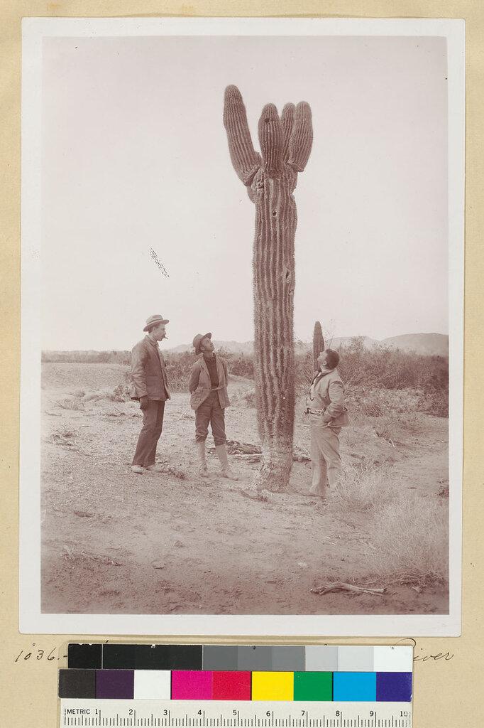 Men pose next to cactus on the Colorado River.jpg