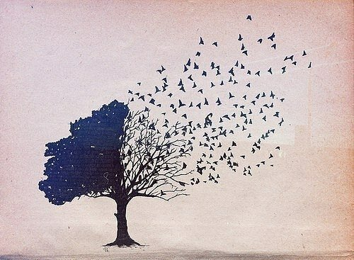 Когда птицы улетают на юг.jpg