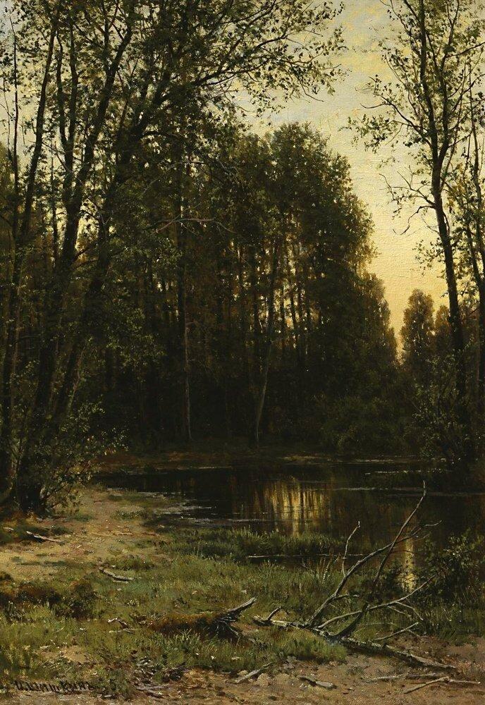 Речная заводь в лесу 1889-1890 52х47.jpg