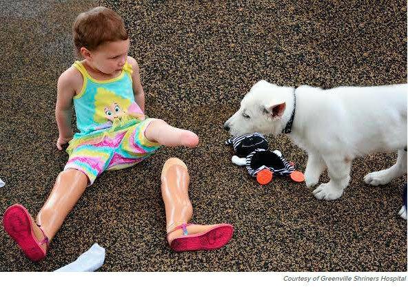 девочка без ноги и собака без лапы