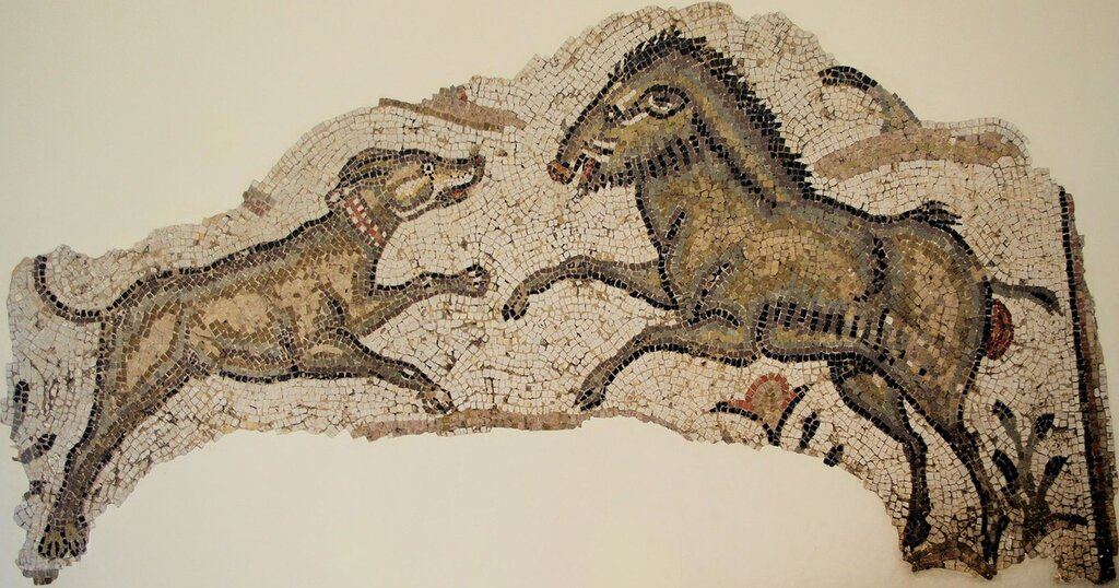 Boar and Hound Mosaic from Carthage, 5th or 6th Century AD