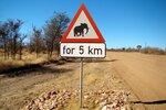Внимание слоны.JPG