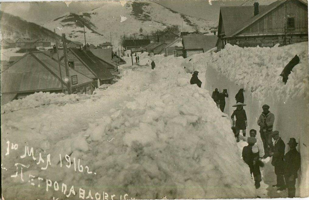 24. Без подписи. 1916