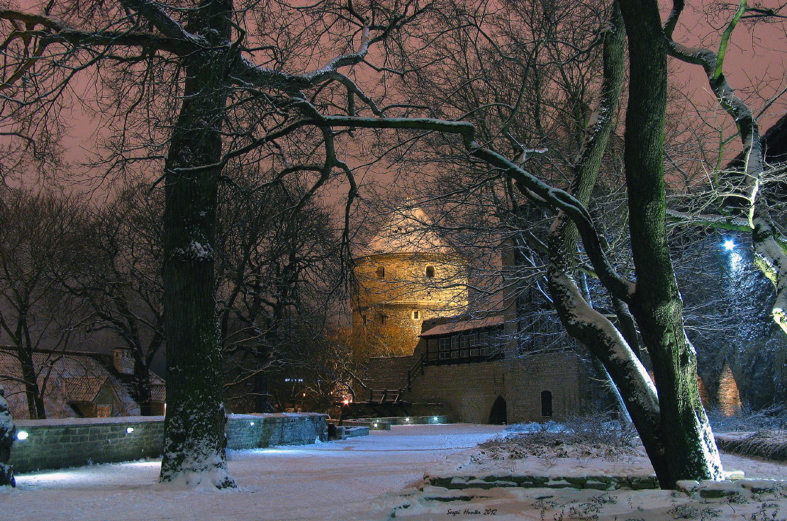 Таллин зимой - парк перед Вирускими воротами