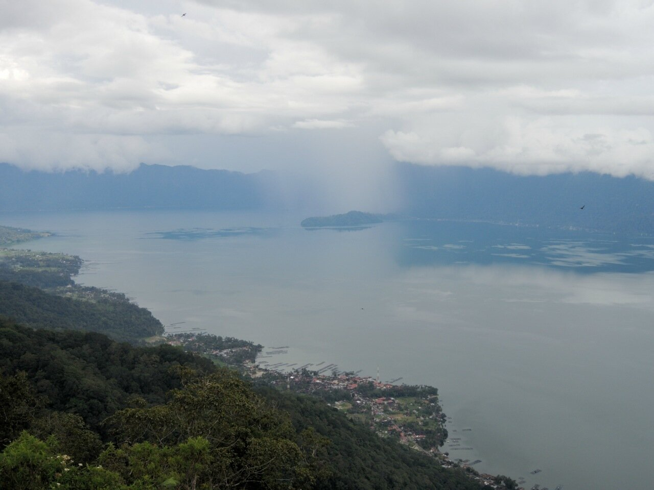 Манинджау