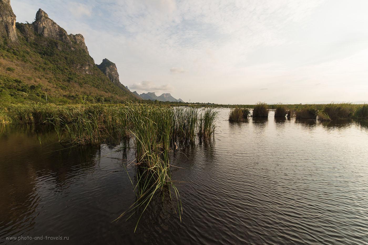 Фотография 12. Величественные пейзажи болота Thung Sam Roi Yot Swamp. Куда поехать в окрестностях Хуахина в Таиланде. (100, 14, F=8.0, 1/400, фотоаппарат Никон Д610, объектив Самъянг 14/2.8)