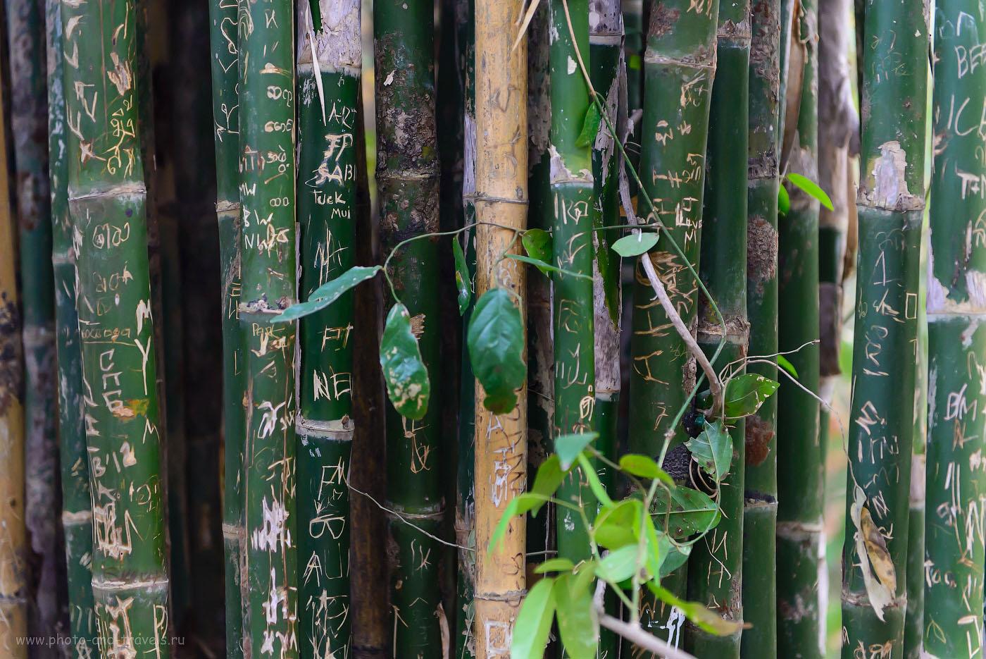Фото 7. Отдых в Таиланде. В национальный парк Эраван и на реку Квай возят на экскурсии из Паттайи. Я бы рекомендовал поехать сюда самостоятельно. Без комментариев (2500, 70, 2.8, 1/200)