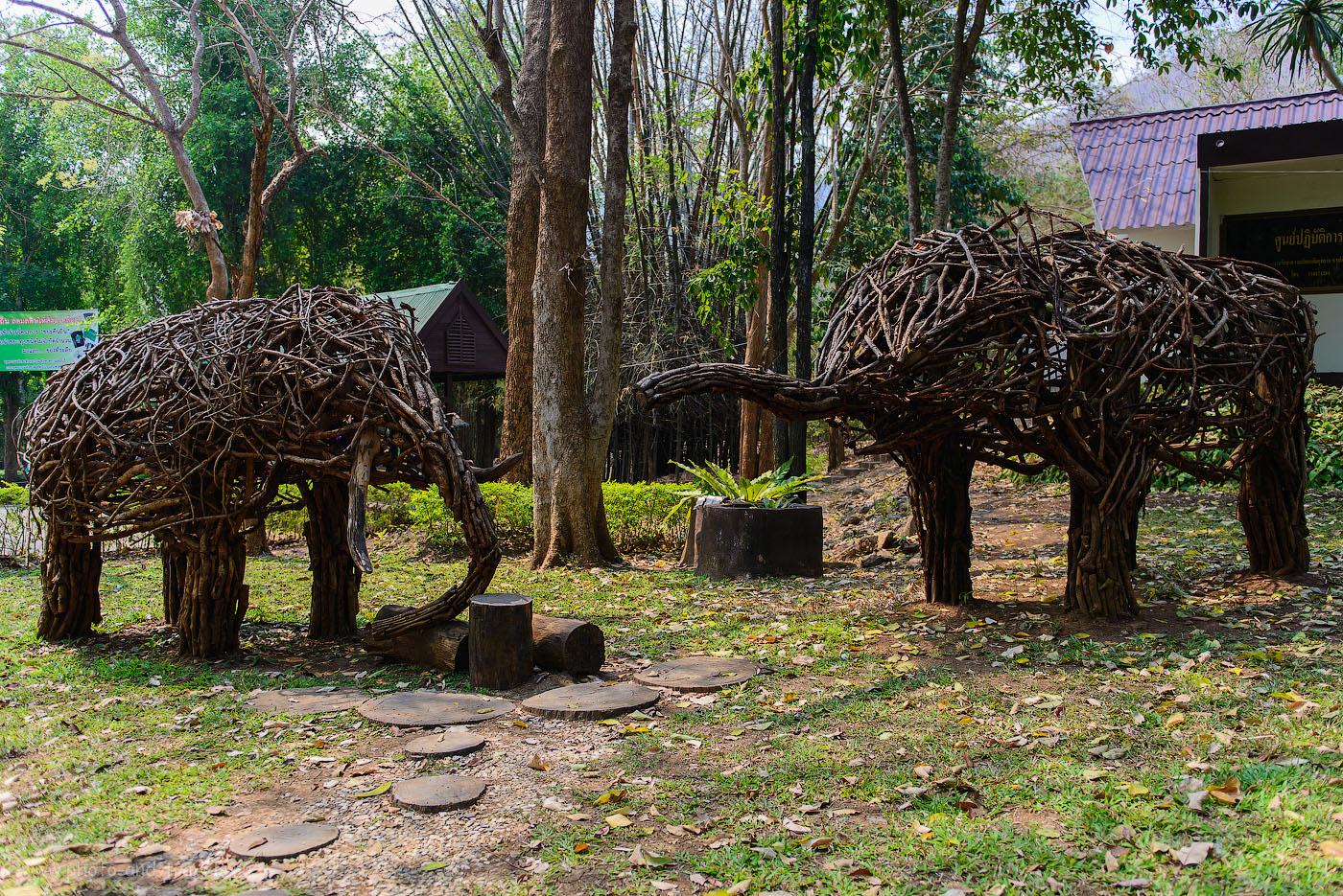Фото 15. На какую экскурсию съездить из Паттайи самостоятельно. Рекомендую парк Эраван. Слоны в Erawan National Park (200, 26, 2.8, 1/500)