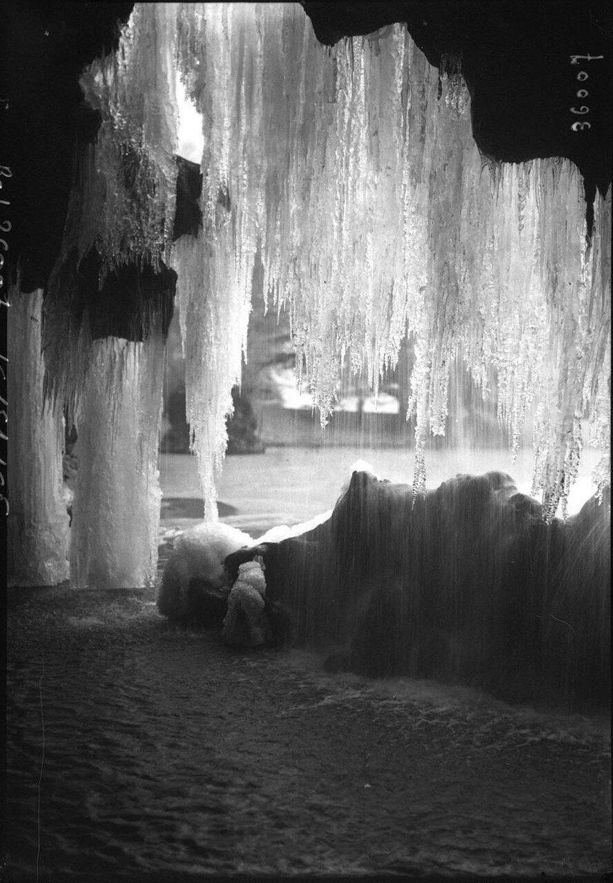1914, 19 января, Замерзший водопад в Булонском лесу