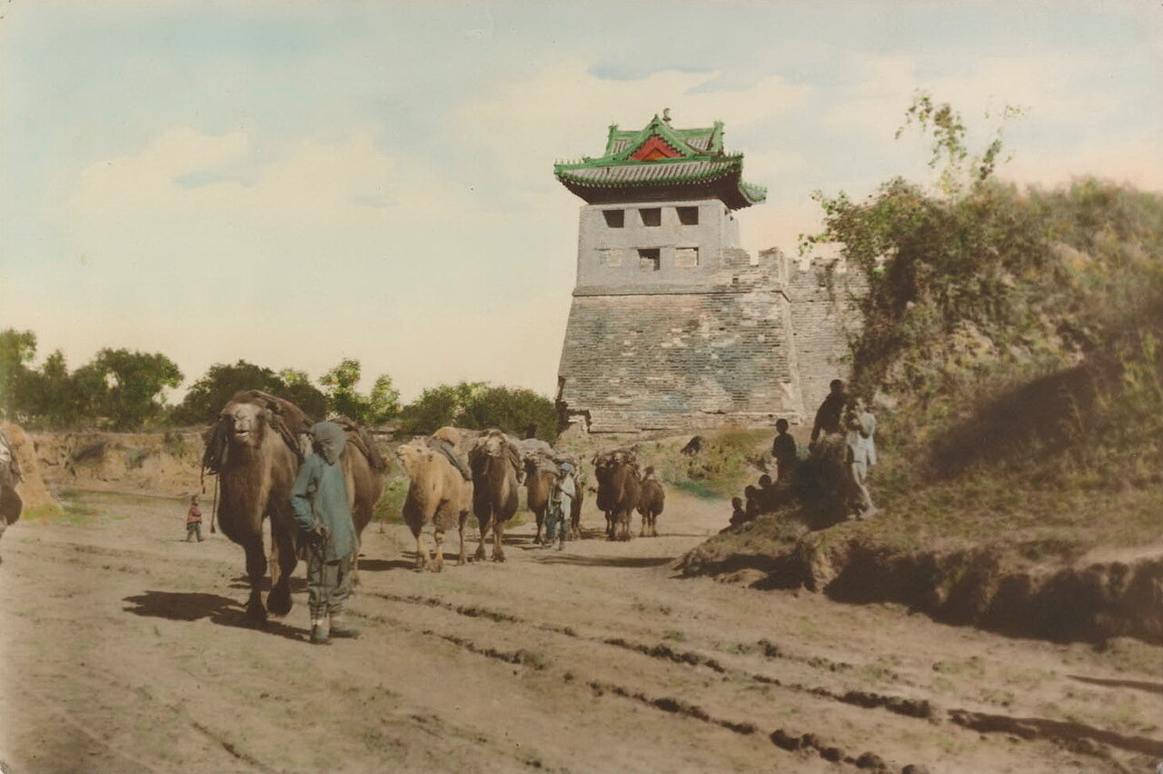 Пекин. Караваны на фоне крепостных стен