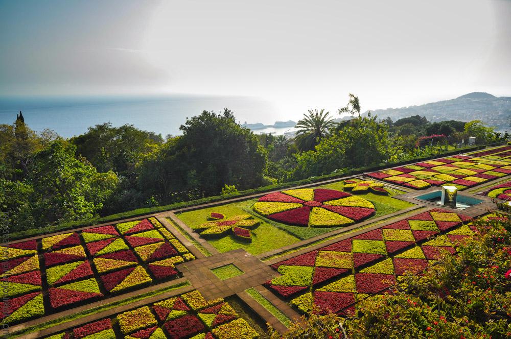 Madeira-Garten-(13).jpg