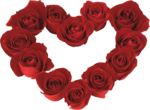 Valentijn_a (164).png