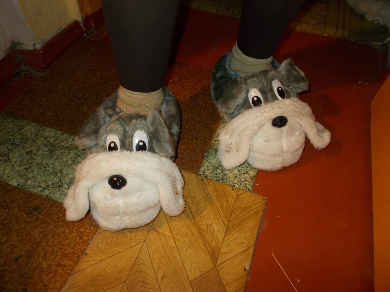 тапочки-собачки