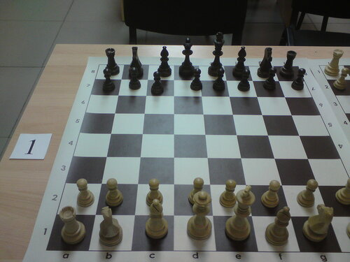 шахматы спорт
