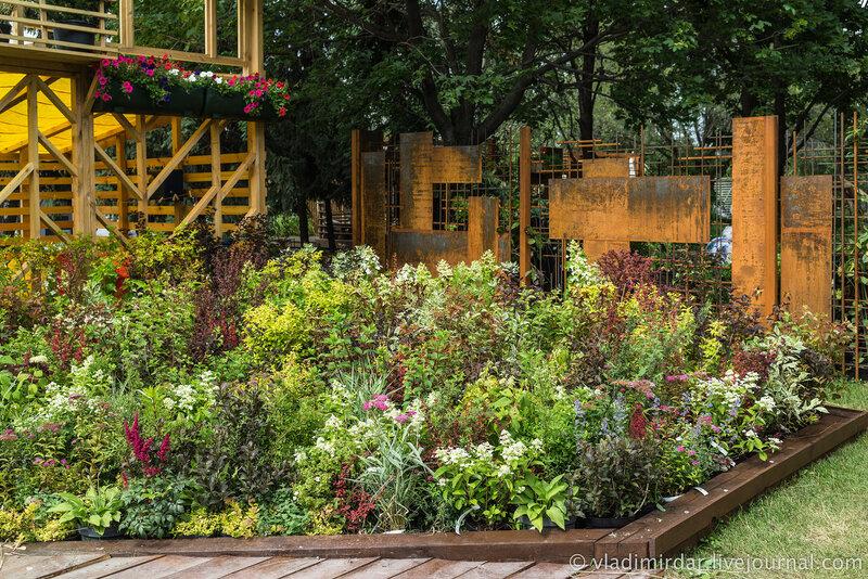 Садовая зелень