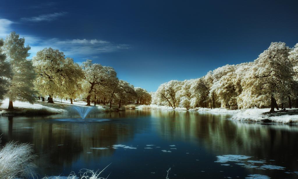 Winterized, Greg Westfall1280.jpg