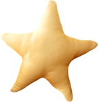 NLD Star.png