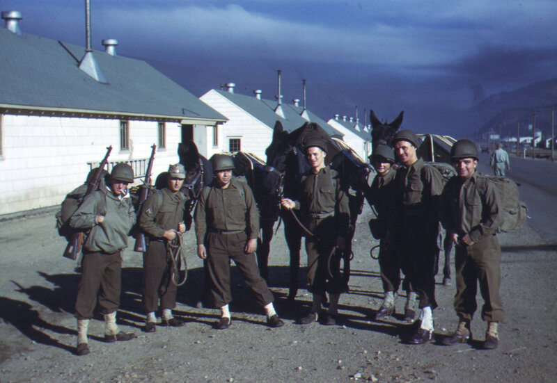 [1943-1944] Seven men with three mules, Camp Hale, Colorado