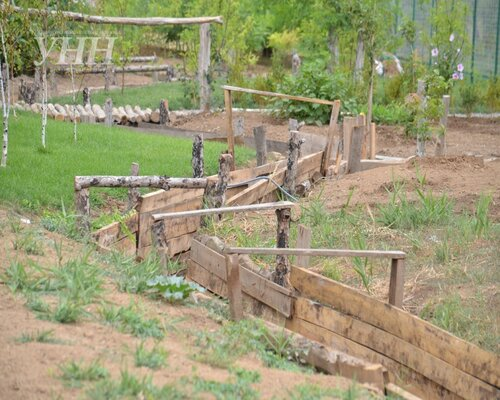 Хроники триффидов: Село укрепляется