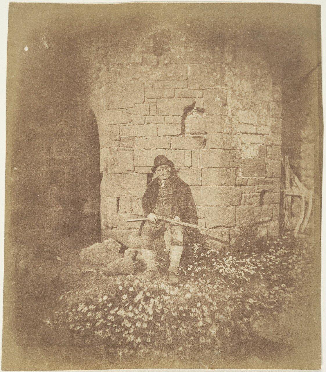 1844. Старый лесник
