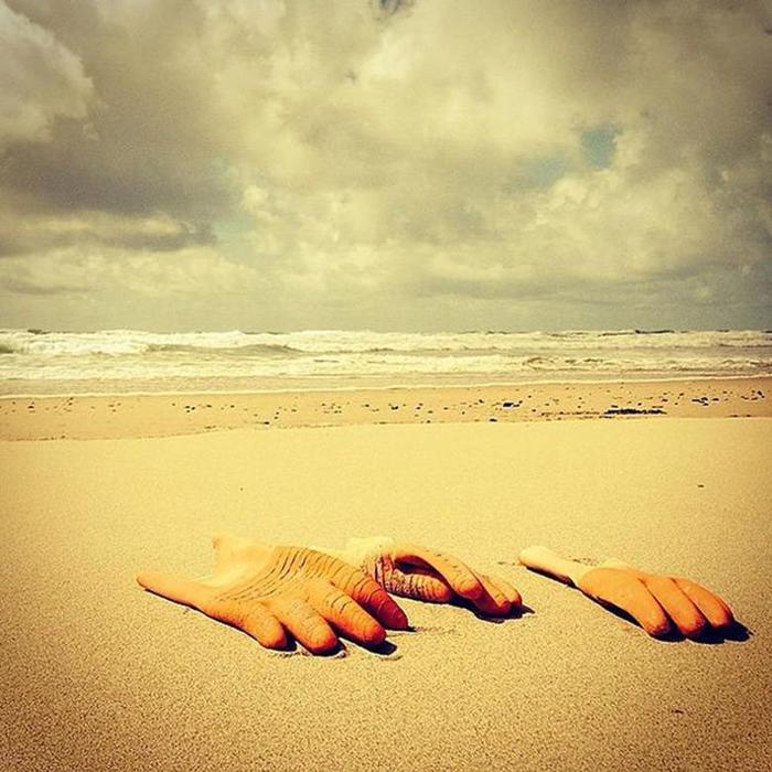 Самые странные предметы, которые выбрасывает на берег моря