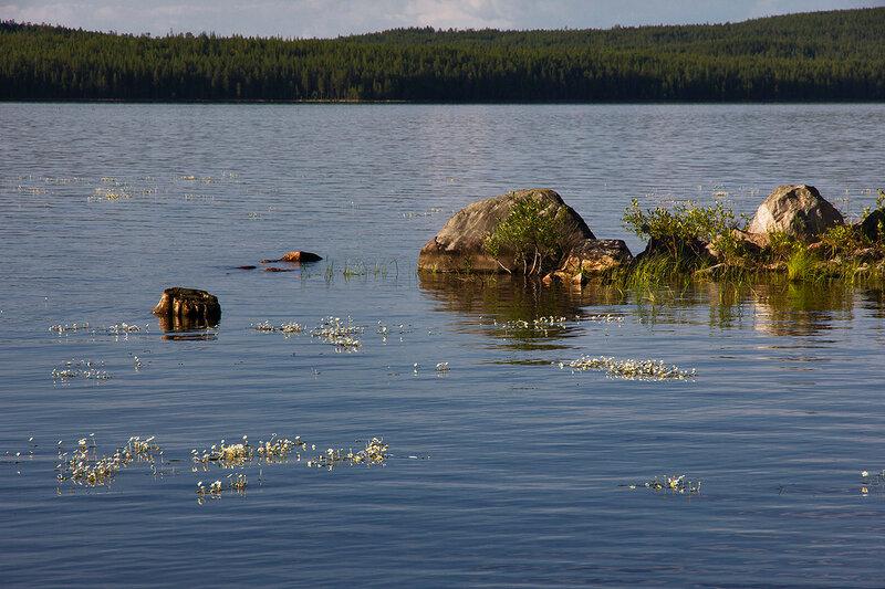 Остров Лайдасалма