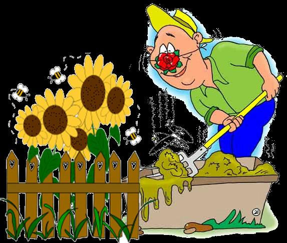 Веселые картинки про дачу и огород