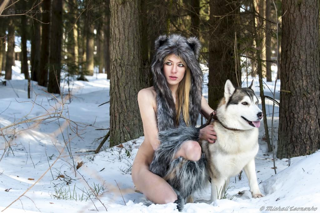 цвет красивые фотографии со шкурой волка тренируется