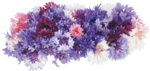 flower (19).png