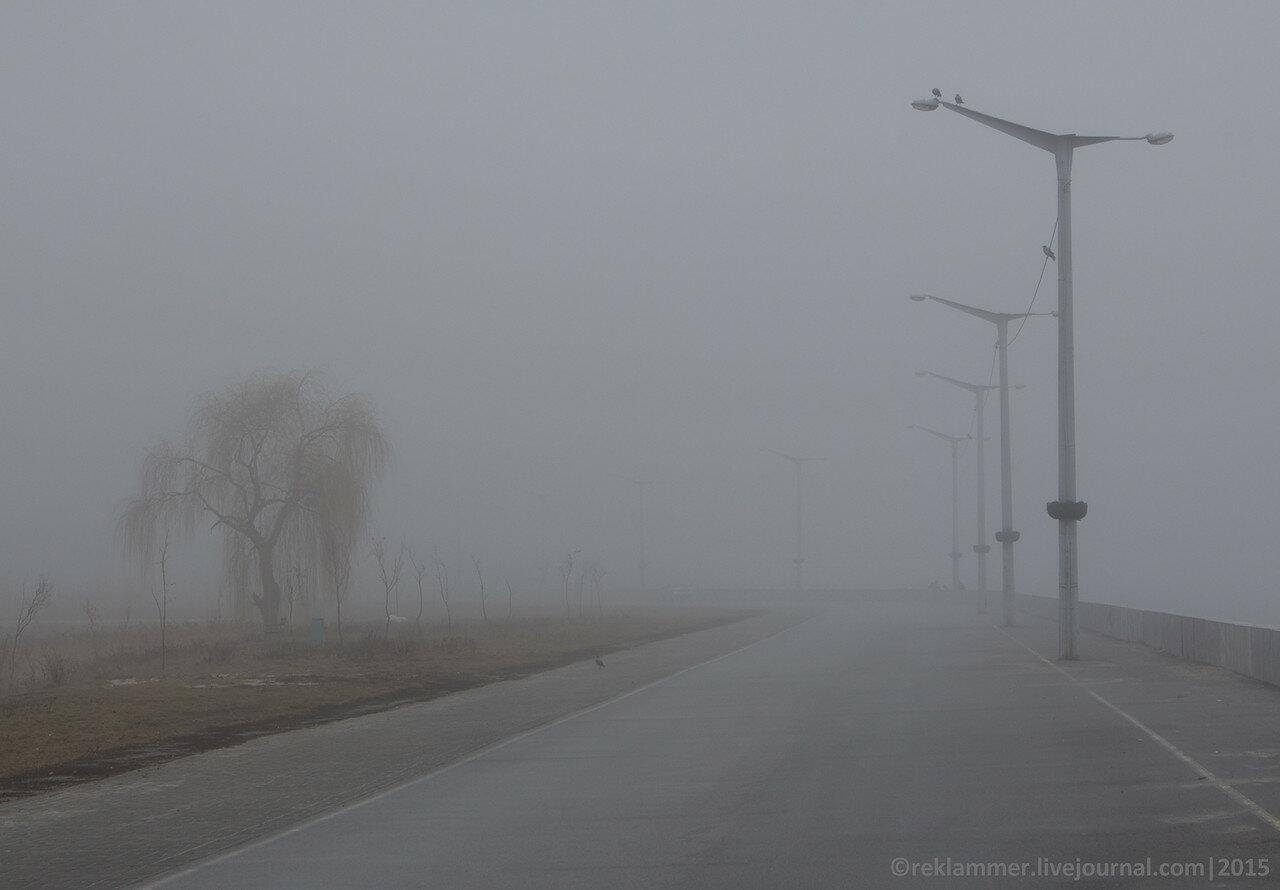 набережная киевского моря в тумане, столбы, вороны сидят на проводах