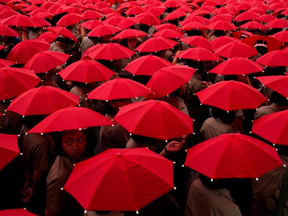 Жизнь в цвете: красный