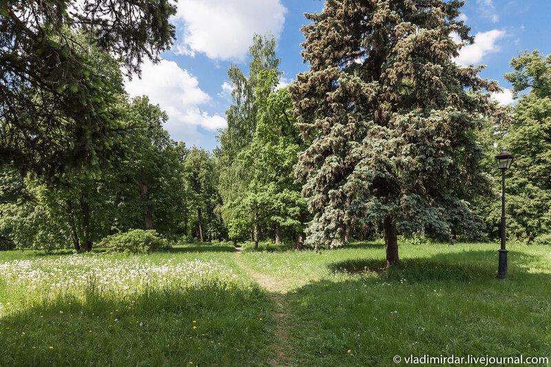 Поляна перед главным домом в усадьбе Суханово