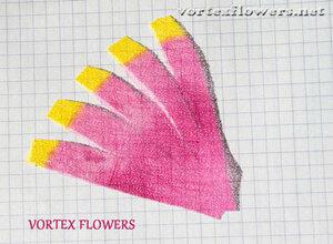 Мастер-класс. Хризантема из ткани «Ягодка» от Vortex  0_fbf7e_4ab8b1b5_M