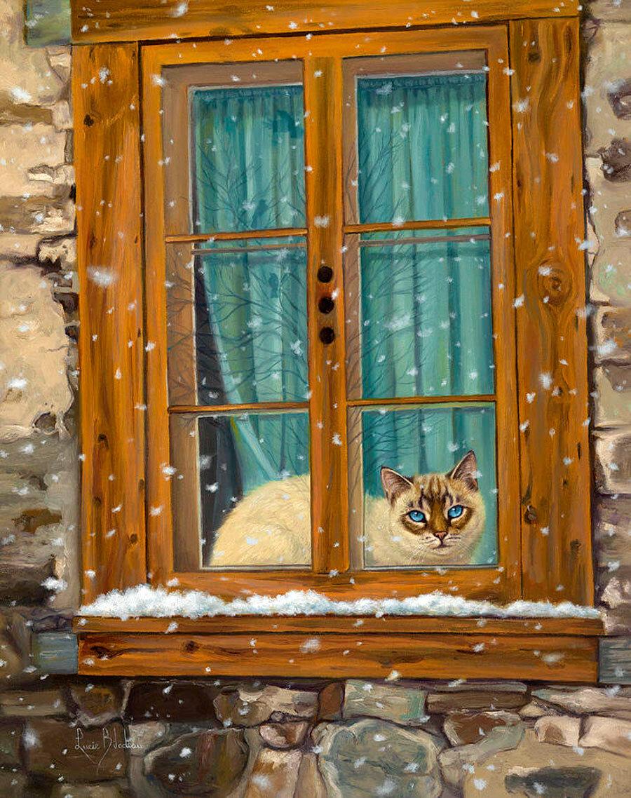 Картинка в окне, смешные