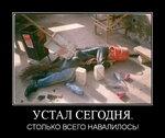 1417769491_demy-14.jpg