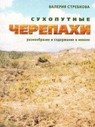 Книга Сухопутные черепахи: разнообразие и содержание в неволе