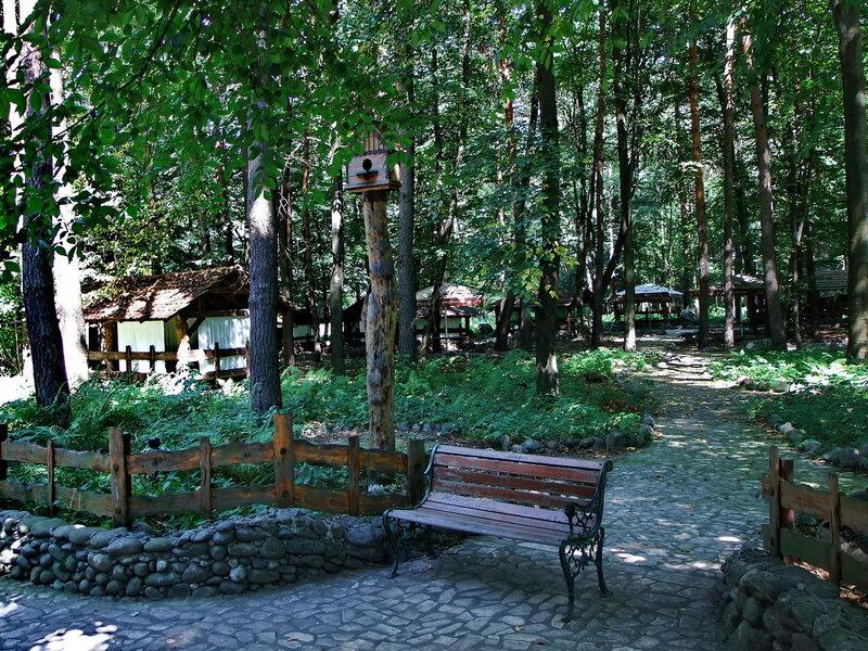 Ресторан в лесу