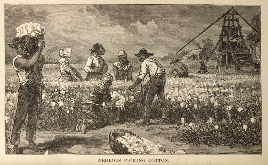 Рабы на сборе хлопка (штат Миссисипи, 1881 год)