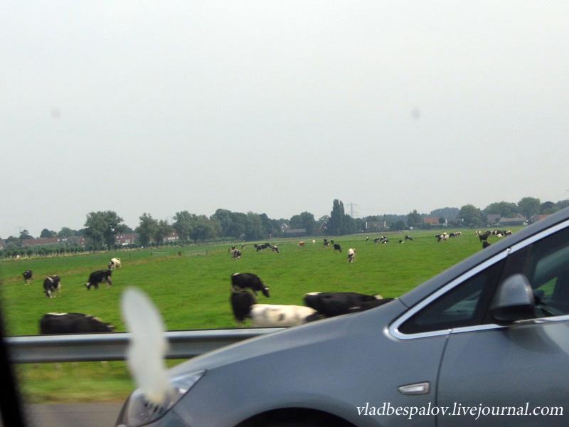 2013-07-17 The way to Amsterdam (14).JPG