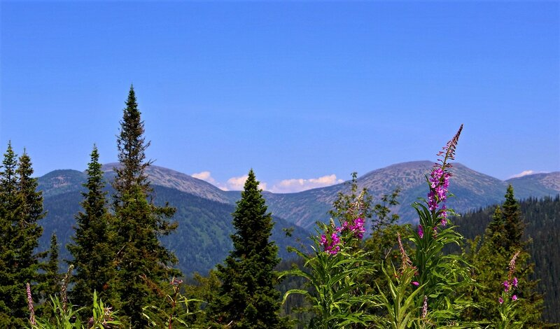 IMG_7902.JPG В горах