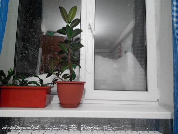 днепропетровск снег
