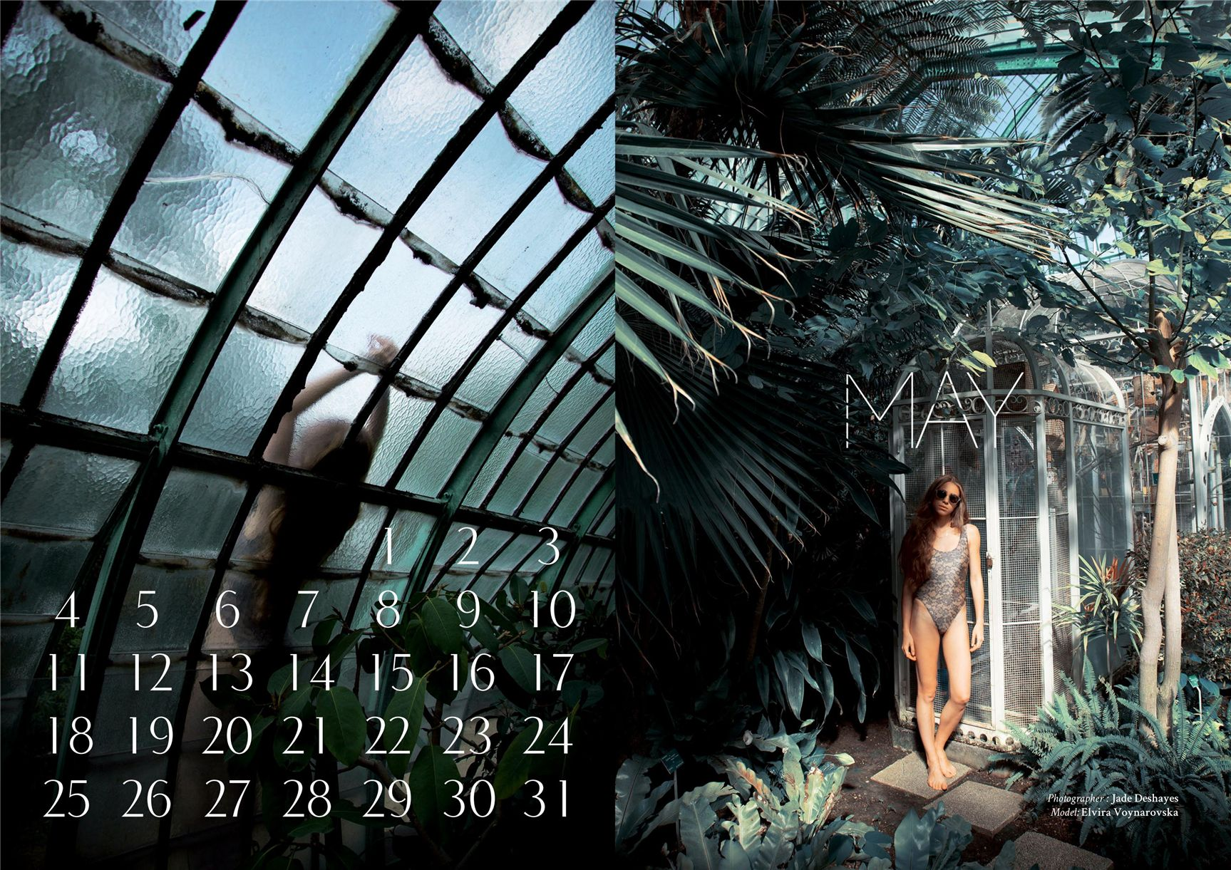 модно-артистический календарь журнала Bizart 2015 calendar - Elvira Voynarovska by Jade Deshayes