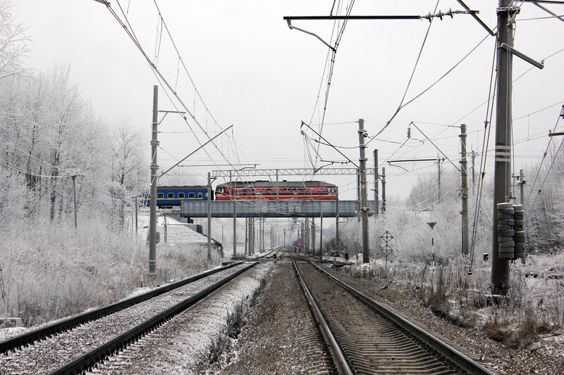 транс ойл санкт петербург: