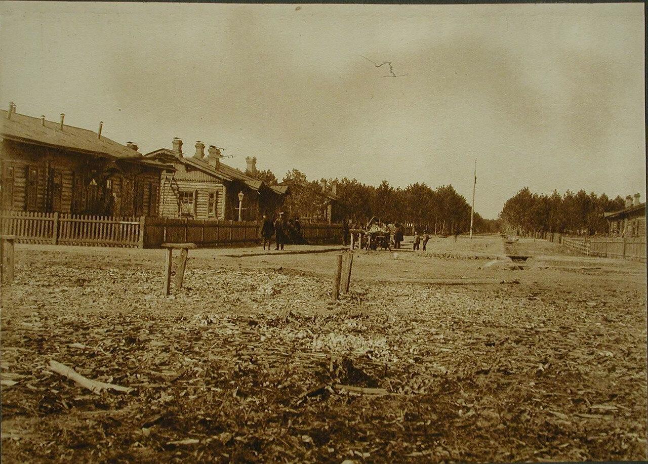 21. Вид одной из улиц посёлка вблизи станции Бочкарёво. Амурская обл. 1910-1914